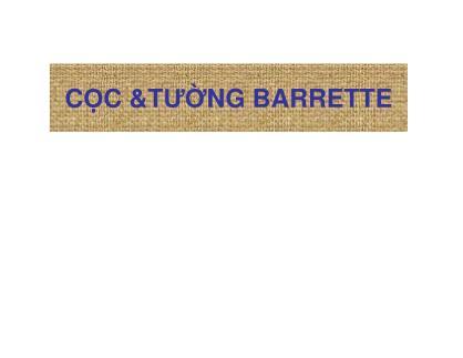Bài giảng Cọc và tường barrette - Phần I: Một số khái niệm cơ bản liên quan đến cọc, tường Barrette