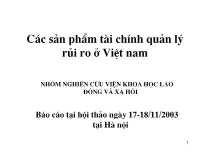 Báo cáo Các sản phẩm tài chính quản lý rủi ro ở Việt nam