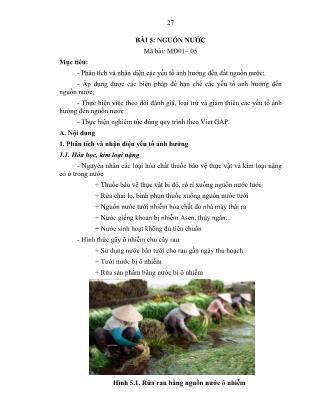 Giáo trình môđun Hướng dẫn sản xuất rau an toàn theo hướng Vietgap (Phần 2)